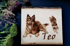Big and Small Teo 30x30